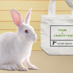 Cruelty Free VS Vegan